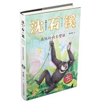 动物小说大王沈石溪・注音读本:戴银铃的长臂猿