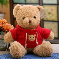 20190702051928573泰迪熊毛绒玩具可爱熊猫小号公仔抱抱熊布娃娃抱枕玩偶送女友礼物