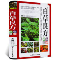 百草良方彩色图鉴 军事医学科学出版社 9787802458574