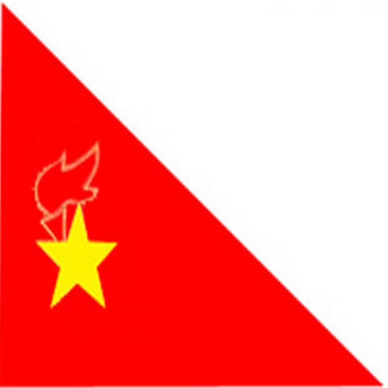 大队旗 大号少先队旗 大队旗 中国少年先锋队队旗 90×120cm (小队旗)