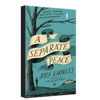【现货】英文原版 A Separate Peace 独自和解 平装小说 新旧版本随 机发