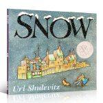 英文原版绘本 Snow 雪 1999年凯迪克银奖 平装 美国图书馆协会推荐图书 启蒙绘本 送音频 Christmas