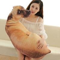 3d仿真狗狗抱枕动物公仔创意娃娃可爱女生睡觉玩偶哈士奇毛绒玩具