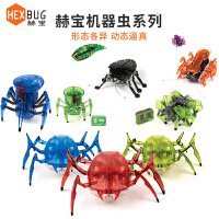 男孩电动机器人会跑的机械昆虫蜘蛛遥控玩具动物61儿童节礼品品质定制新品