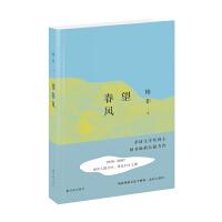 2016中国好书获奖作品 望春风