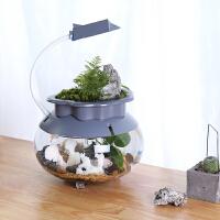鱼缸玻璃生态瓶鱼缸创意水族箱懒人免换水小型鱼缸