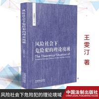 正版 风险社会下危险犯的理论境域 中国法制出版社