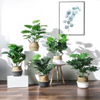 仿真植物盆栽龟背叶植物室内客厅办公室落地盆景装饰绿植摆件