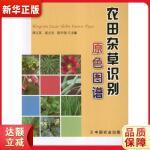 农田杂草识别原色图谱 浑之英 中国农业出版社 9787109168022