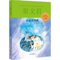 �Z里�Z梅大系 小鬼�智�� 秦文君 少年�和�出版社 9787532494750