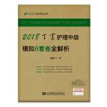(备战2019)2018丁震医学教育系列考试丛书:2018丁震护理中级模拟6套卷全解析