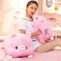 小猪猪毛绒玩具暖手抱枕插手布娃娃玩偶送女孩生日礼物圣诞节儿童