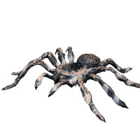 儿童实心野生动物昆虫模型玩具套装蜘蛛 红蜘蛛 黑蜘蛛