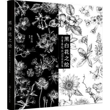 黑白花之绘:为青春绘出100朵花意(pdf+txt+epub+azw3+mobi电子书在线阅读下载)