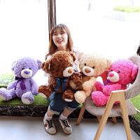彩色熊公仔女生抱抱熊毛绒玩具送女友可爱薰衣草紫色小熊娃娃