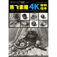 熊飞素描4K静物临本 熊飞 湖北美术出版社 9787539471204