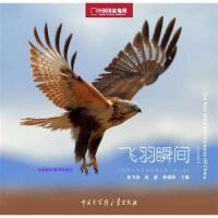 飞羽瞬间2中国野生鸟类精彩图片选(第二卷)张书清【正版图书,达额立减】