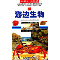 【二手旧书9成新】海边生物/从小爱科学 小口袋大世界 克里斯汀・纳兹伊尔,格雷厄姆・昂德希尔 绘,乐凡