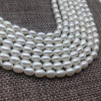 4-5mm小米粒型小米形珍珠项链手链散珠DIY近乎无暇强光白色送妈妈 加珠宝盒
