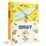 正版全新 纸上景观:奇异虫子