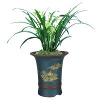 紫砂花盆透气高筒简约花盆套装圆形蓝色花盆