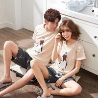 春秋季女夏季棉短袖韩版可爱全棉薄款男家居服两件套装