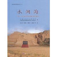 水洞沟――2003~2007年度考古发掘与研究报告