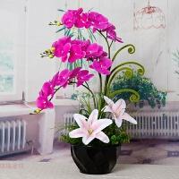 仿真蝴蝶兰百合套装花瓶盆栽假花装饰花客厅卧室餐厅绢花摆设花艺