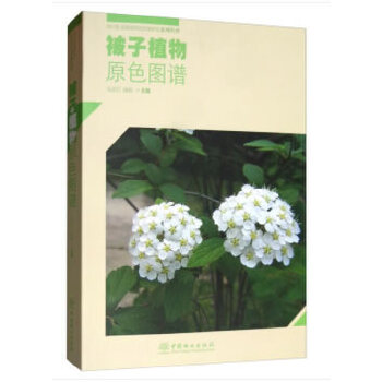 被子植物原色图谱/四川卧龙国家级自然保护区系列丛书