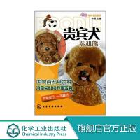 贵宾犬(泰迪熊) 林海 化学工业出版社 9787122111104