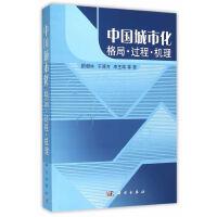 中国城市化格局过程机理