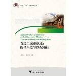 """农民工城市就业:搜寻渠道与匹配路径 中国""""三农""""问题研究文丛"""