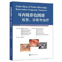 耳内镜彩色图谱检查诊断与治疗 【正版书籍】