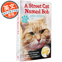 流浪猫鲍勃 英文原版小说 A Street Cat Named Bob 一只叫鲍勃的流浪猫 伦敦街猫记 当Bob来敲门