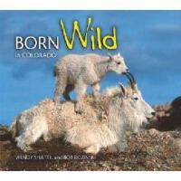【预订】Born Wild in Colorado