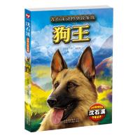 沈石溪动物小说鉴赏-狗王