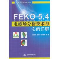 全新正版FEKO 5 4电磁场分析技术与实例详解 阎照文,苏东林,袁晓梅著 9787517005803 水利水电出版社