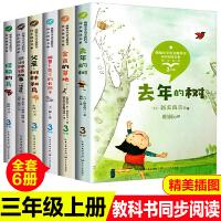 小学生三年级课外书书单(去年的树/金色的草地/胡萝卜先生的长胡子/父亲,树林和鸟/非洲神话故事/搭船的鸟)语文教材配套同