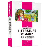 爱丽丝漫游奇境 中小学生新课标课外阅读・世界经典文学名著必读故事书 名师精读版