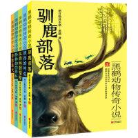 驯鹿部落 黑鹤动物传奇小说全5册 8-10-12岁儿童文学阅读图书 三四五六年级小学生必读课外书籍 畅销少儿励志读物