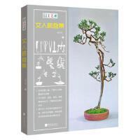 手工艺术:文人树盆景