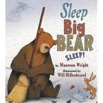 【预订】Sleep, Big Bear, Sleep!