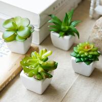 多肉仿真植物假花盆栽盆景 塑料花迷你小肉肉方形陶瓷摆件