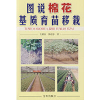 图说棉花基质育苗移栽