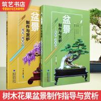 盆景制作与赏析 两本一套 松柏 杂木 观花 观果 盆栽指导 兑宝峰编著 基础理论书籍