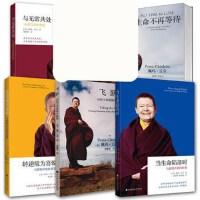 佩玛丘卓的智慧 全5册 《当生命陷落时》《与无常共处》《转逆境为喜悦》《飞跃》《生命不再等待》