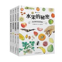 正版全新 盛口满的手绘自然图鉴系列全四册:水果的秘密+蔬菜的植物学+谷物的智慧+餐后骨头大考察