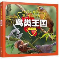 让孩子着迷的第一堂自然课鸟类王国十万个为什么绘本儿童科普读物启蒙故事书3-4-5-6-7周岁小学生一二年级课外图书籍少
