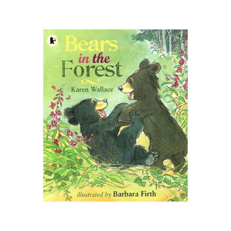 英文原版绘本 Bears in the Forest 小学STEM 科普百科科普图画书 Walker Nature Story