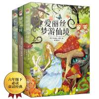 童话故事:尼尔斯骑鹅旅行记+爱丽丝梦游仙境+秘密花园(全三册)